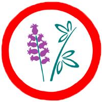 31. Gyógynövénykertész különpróba